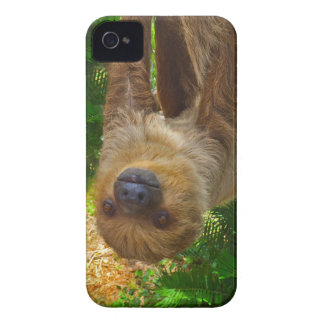 Sloth Rainforest Gifts Case-Mate iPhone 4 Cases