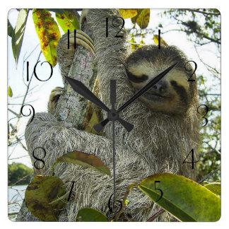 Sloth Up A Tree Square Wall Clock