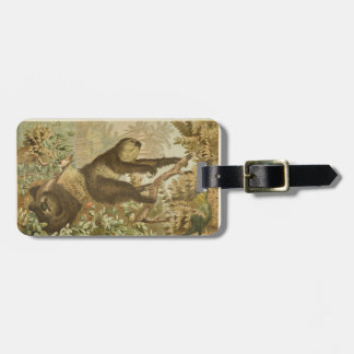 Sloths are Super Luggage Tag