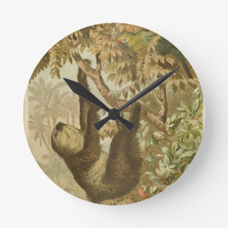 Sloths are Super Round Clock