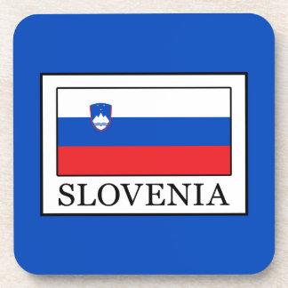 Slovenia Coaster