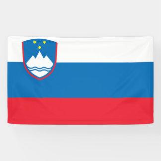 Slovenia Flag Banner