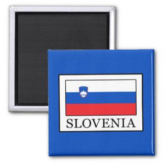 Slovenia Magnet