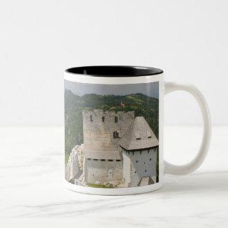 SLOVENIA, STAJERSKA Styria), Celje: Town View Two-Tone Coffee Mug