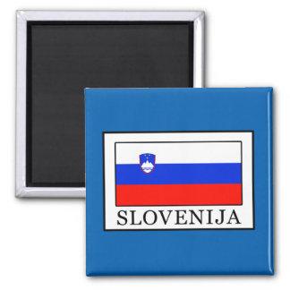 Slovenija Magnet