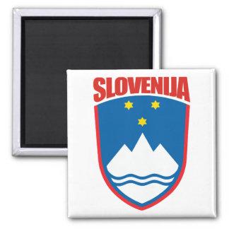 Slovenija (Slovenia) Magnet