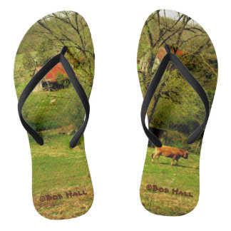 Slow and Easy Flip Flops by Bob Hall
