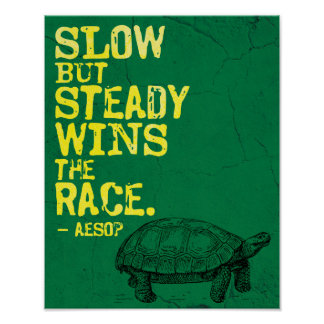 SLOW BUT STEADY WINS THE RACE  Aesop Wisdom Poster