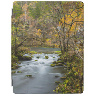 Slow Down At Alley iPad Cover