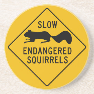 Slow Endangered Squirrels, Warning Sign, Maryland Coaster