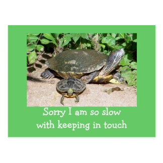 slow keeping in touch card postcard