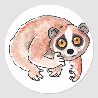Slow Loris Stickers