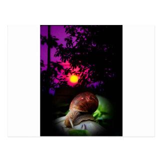 slow sunset postcard