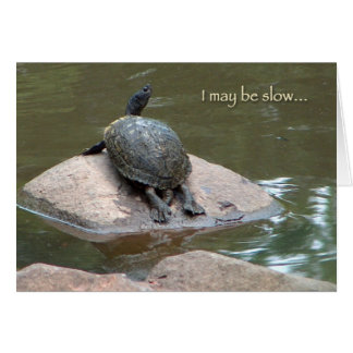 slow turtle birthday card