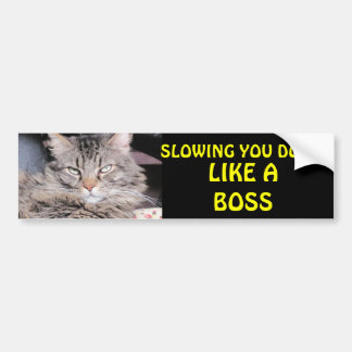Slowing You Down Like A Boss Bumper Stickers