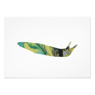 Slug art photo print