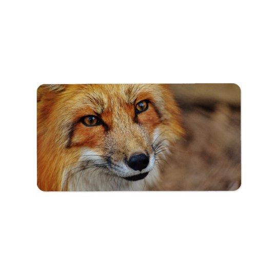 Sly Fox Label