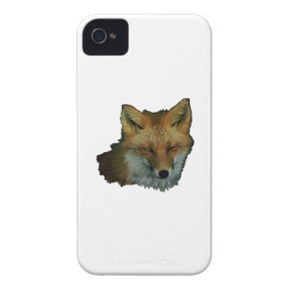 Sly Little One iPhone 4 Cases