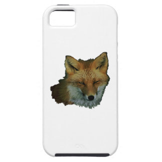 Sly Little One iPhone 5 Covers