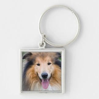 Small (3,5cm) Carry-key square Premium dog Keychain