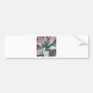 Small agave bumper sticker