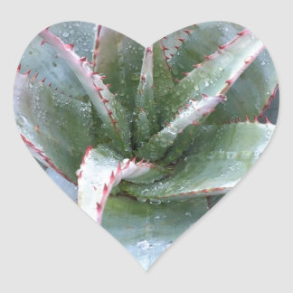 Small agave heart sticker