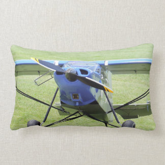 Small Airplane Parked On The Grass Lumbar Pillow