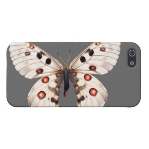 Small Apollo Butterfly Cases For iPhone 5