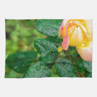 Small autumn rose with droplets kitchen towel