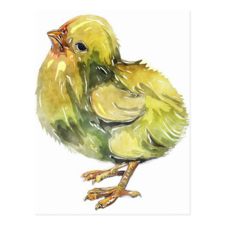 Small baby yellow chicken painted postcard
