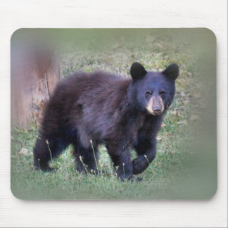 Small bear mouse pad