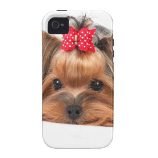 Small beauty iPhone 4 cover