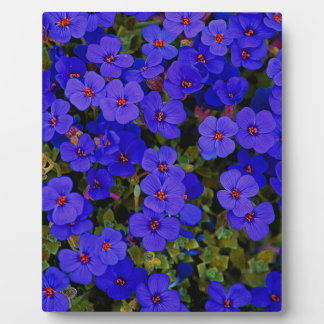 Small Blue Flowers Plaque