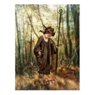 Small Brown Wizard by Shawna Mac Postcard