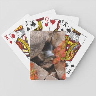 Small creek in autumn, California Poker Deck
