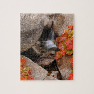 Small creek in autumn, California Puzzle