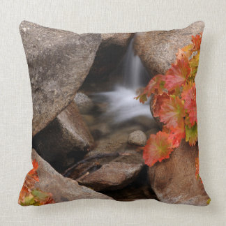 Small creek in autumn, California Throw Pillow
