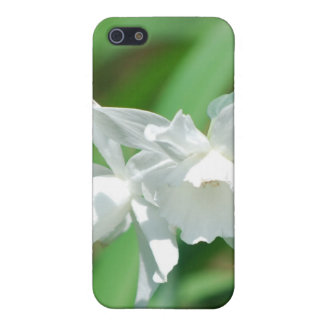 Small Cup Daffodils iPhone 4 Case