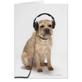 Small dog wearing headphones card