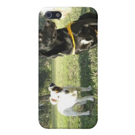 Small dogs cover for iphone case for iPhone 5