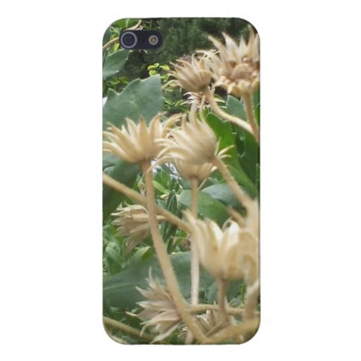SMALL DRY FLOWERS IPHONE CASE COVERS FOR iPhone 5