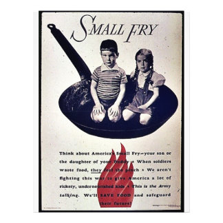 Small Fry Custom Flyer