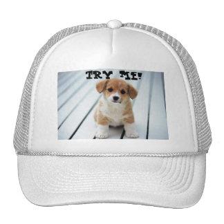 SMALL FRY TRUCKER HATS