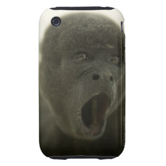 Small grey monkey, outdoors, portrait tough iPhone 3 covers