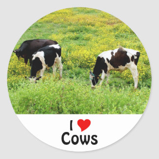 Small herd of bulls classic round sticker