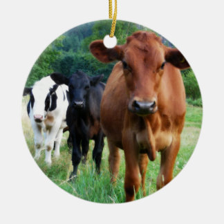 Small Herd of Three Cows Round Ceramic Ornament