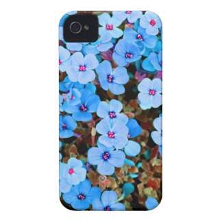 Small Lite Blue Flowers iPhone 4 Covers