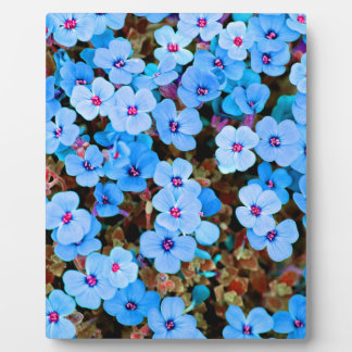 Small Lite Blue Flowers Plaque