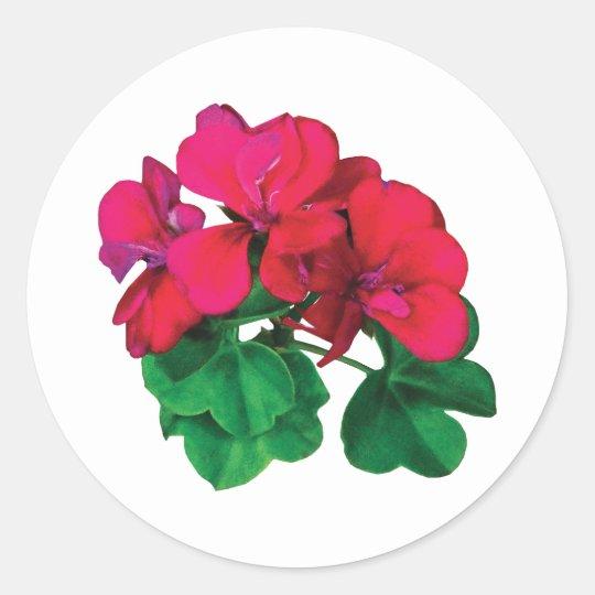 Small Magenta Geraniums Classic Round Sticker