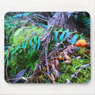 Small Orange Wild Mushroom in the Forest Mouse Pad